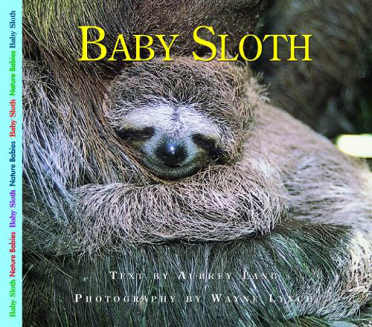 Baby Sloth Information Book