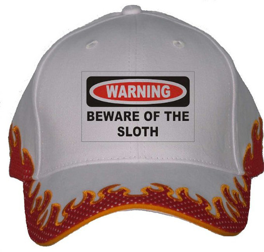 Beware of the sloth - flaming sloth hat