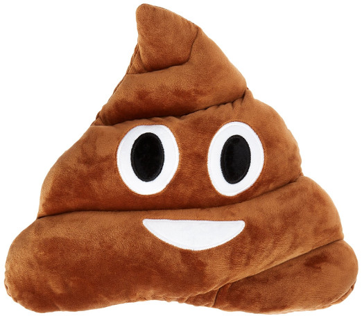 Poo Emoji Funny Pillow Case Cushion