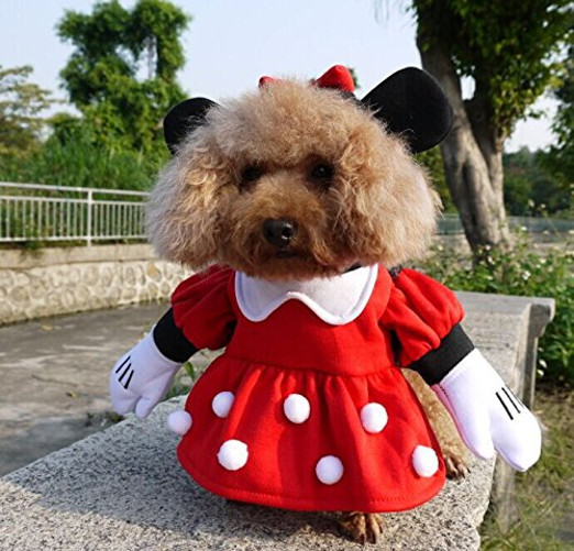 Funny Minnie Pet Costumes