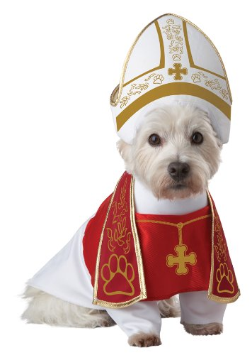 Funny Holy Priest Pet Costume