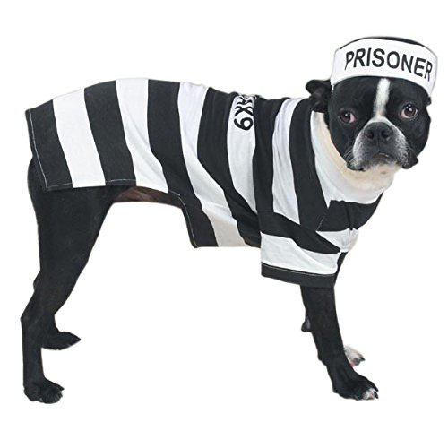 Funny Prison Jail Pet Costume