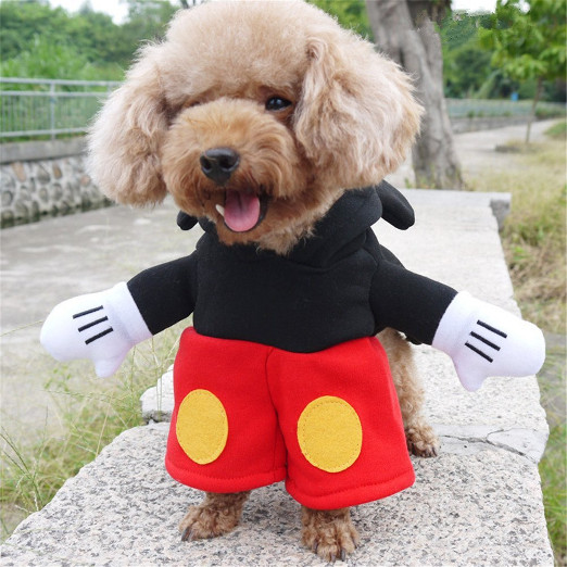 Funny Mickey Dog Costume