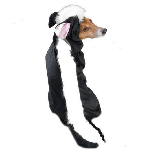 Funny Dog Skunk Costume
