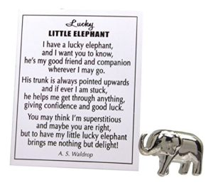 Lucky elephant pocket charm