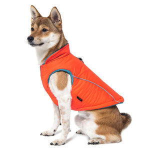 Cold Weather Fleece For Sporty Dogs