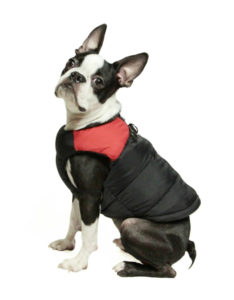 Padded Cold Weather Dog Sweater Vest