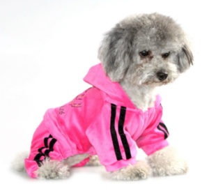 Puppy Clothes Jumpsuit Coat