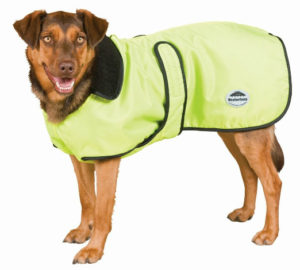 Windbreaker Deluxe Dog Sweater