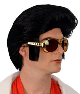 Elvis Dress Up Wig
