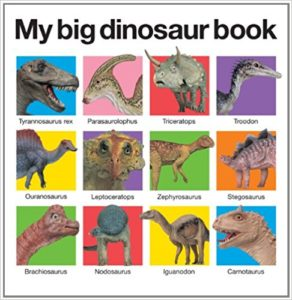Big Dinosaur Picture Book