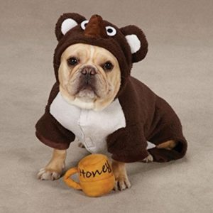 pet dog bear costume